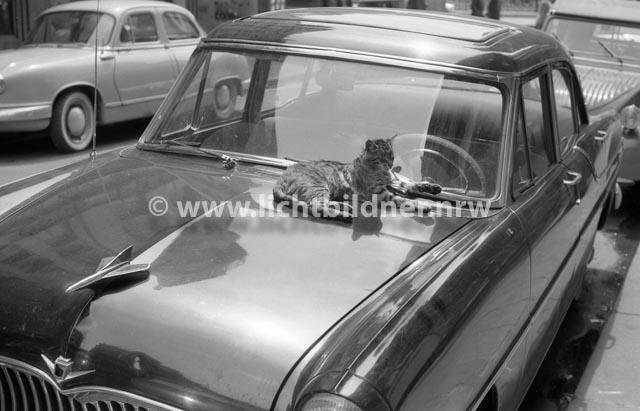 Paris_1959-6